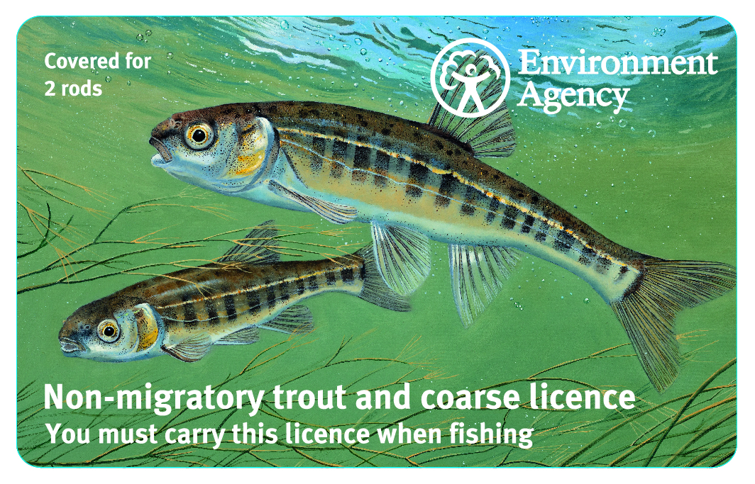 The standard two-rod EA rod licence has an image of minnows. With lockdown fishing 'banned', they are still being sold.
