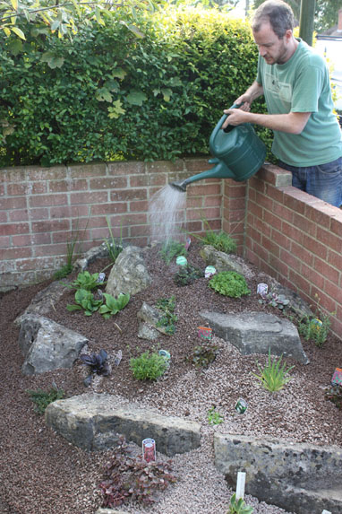 Create an alpine rockery amateur gardening for Garden design ideas rockery