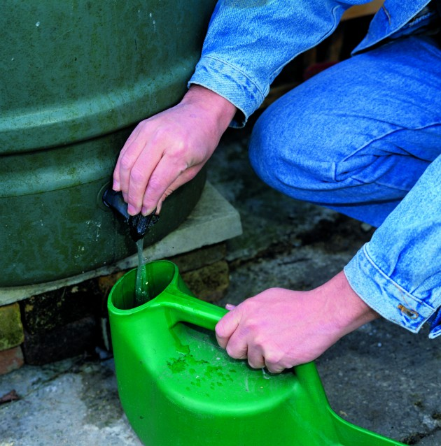 Gardeners have been advised to invest in more water butts