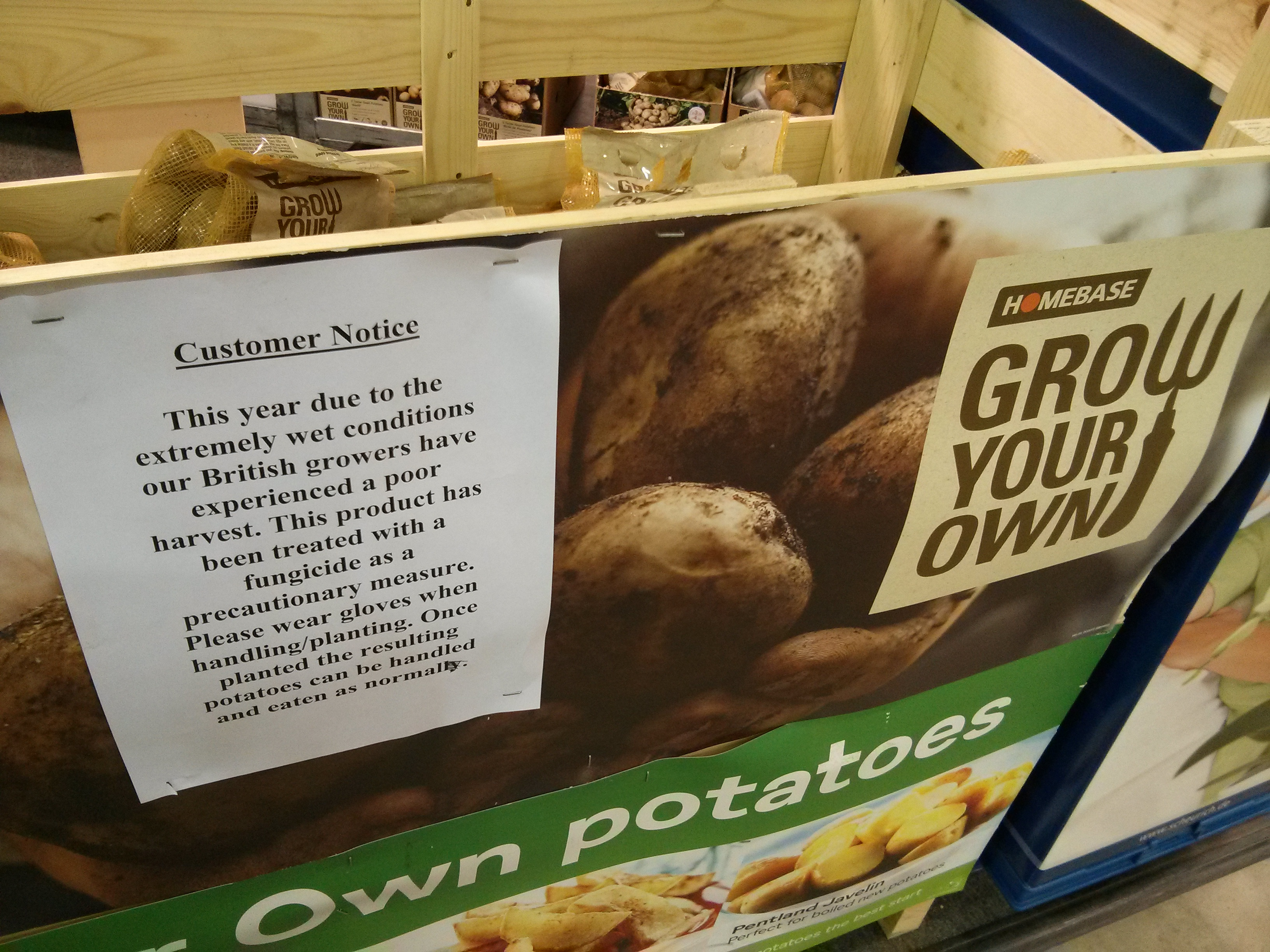 Seed Potatoes Sprayed With Fungicide Amateur Gardening
