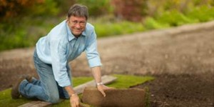 http://keyassets.timeincuk.net/inspirewp/live/wp-content/uploads/sites/16/2014/07/Alan-Titchmarsh-Lawn-from-turf-300x150.jpg