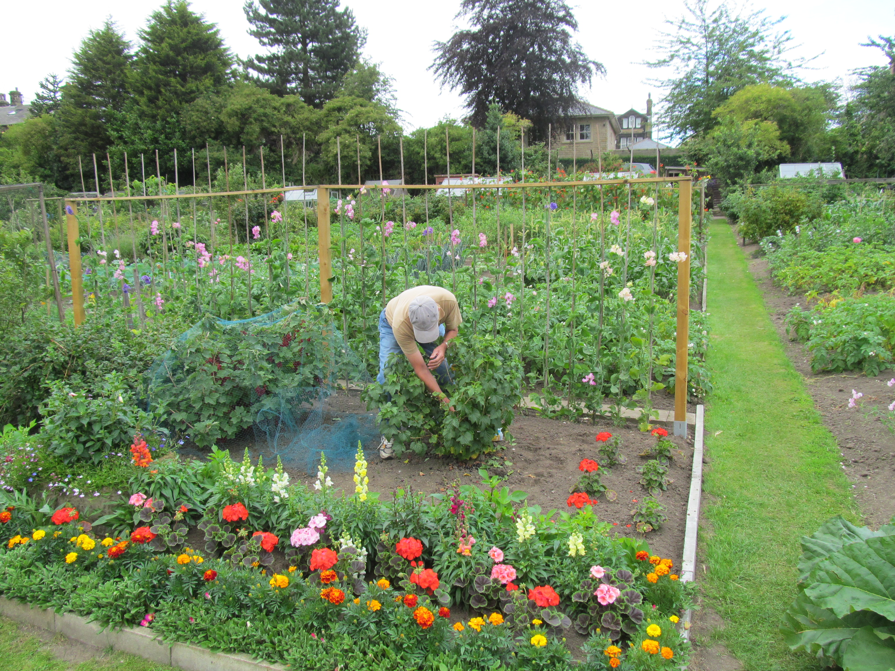 Leeds Allotment Gardeners In Battle With Council