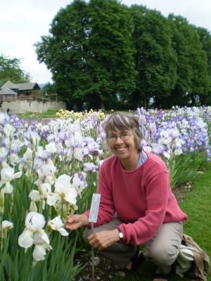 Sarah Cook with irises
