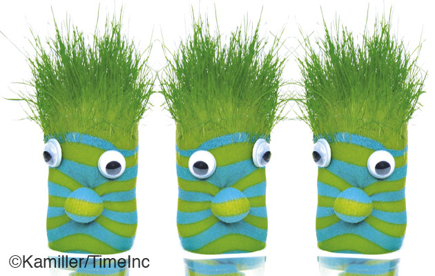How to make a grass head - a great project for children