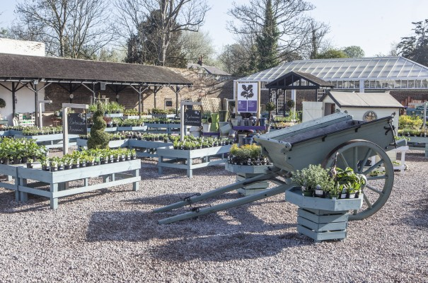 National Trust Opens Britain 39 S First Peat Free Garden Centre At Morden Hall Park Amateur Gardening