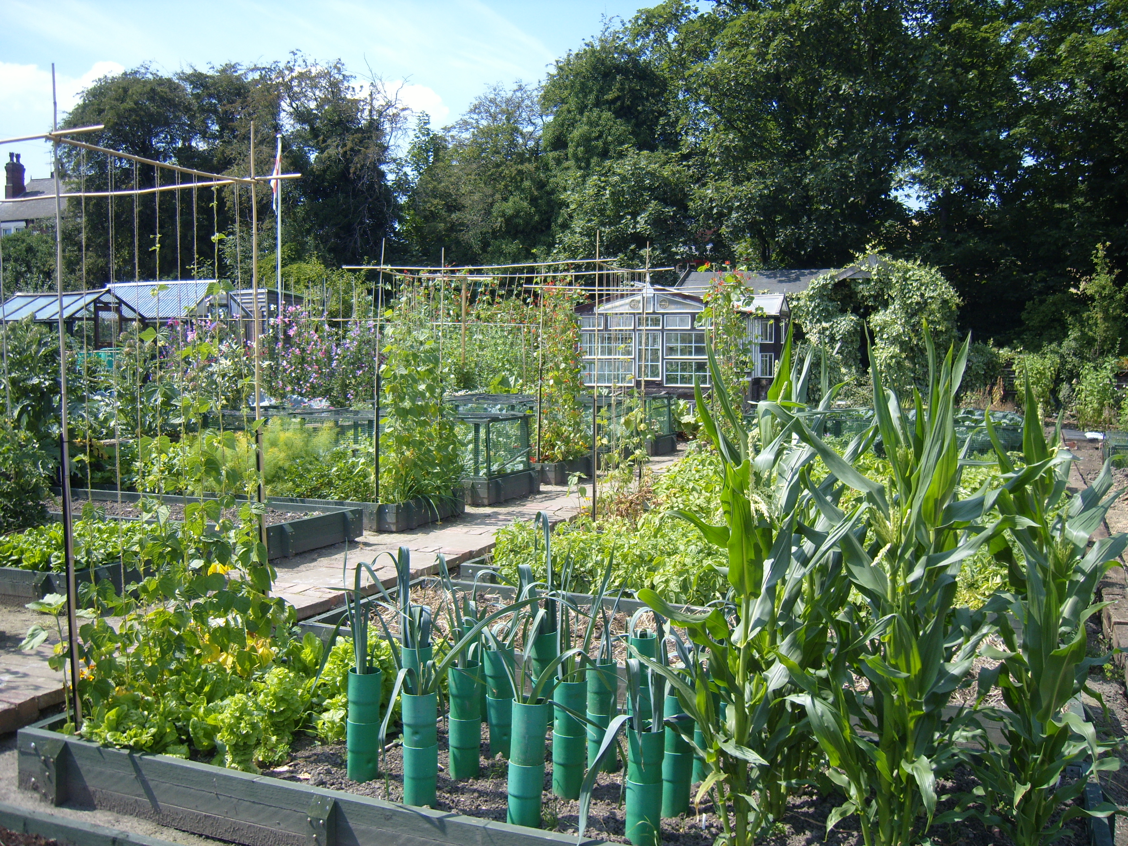 Scottish Parliament approves Bill to protect allotments for future ...