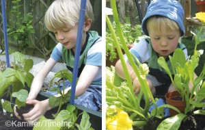 Companion planting - a good lesson for children