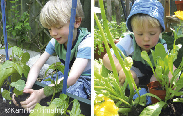 Companion planting - a good lesson for children