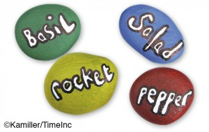 Painted pebbles, plant markers - a great craft project for children