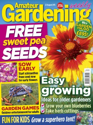 Amateur Gardening cover