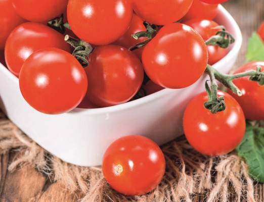 Tomato Crimson Cherry is blight resistant