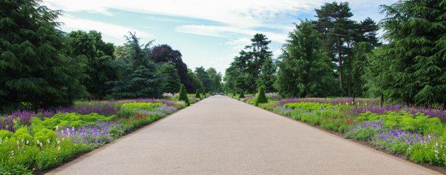 Kew Gardens double herbaceous borders