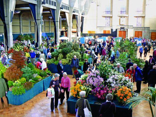 An RHS Flower Show