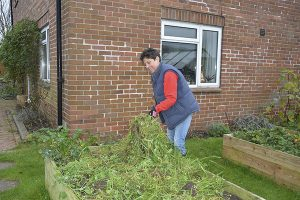 Gardening Editor Ruth Hayes explains how green manures are a natural way of improving soil