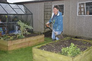 Preparing your soil for sowing - Amateur Gardening