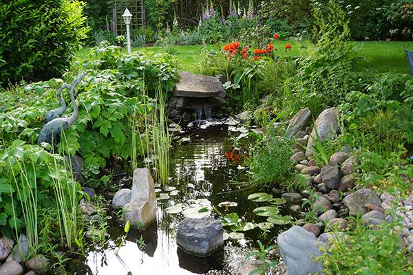 Create a garden pond