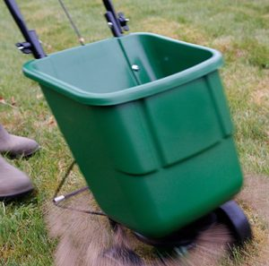 CR4KN8 Gardener using a rotary lawn feed spreader