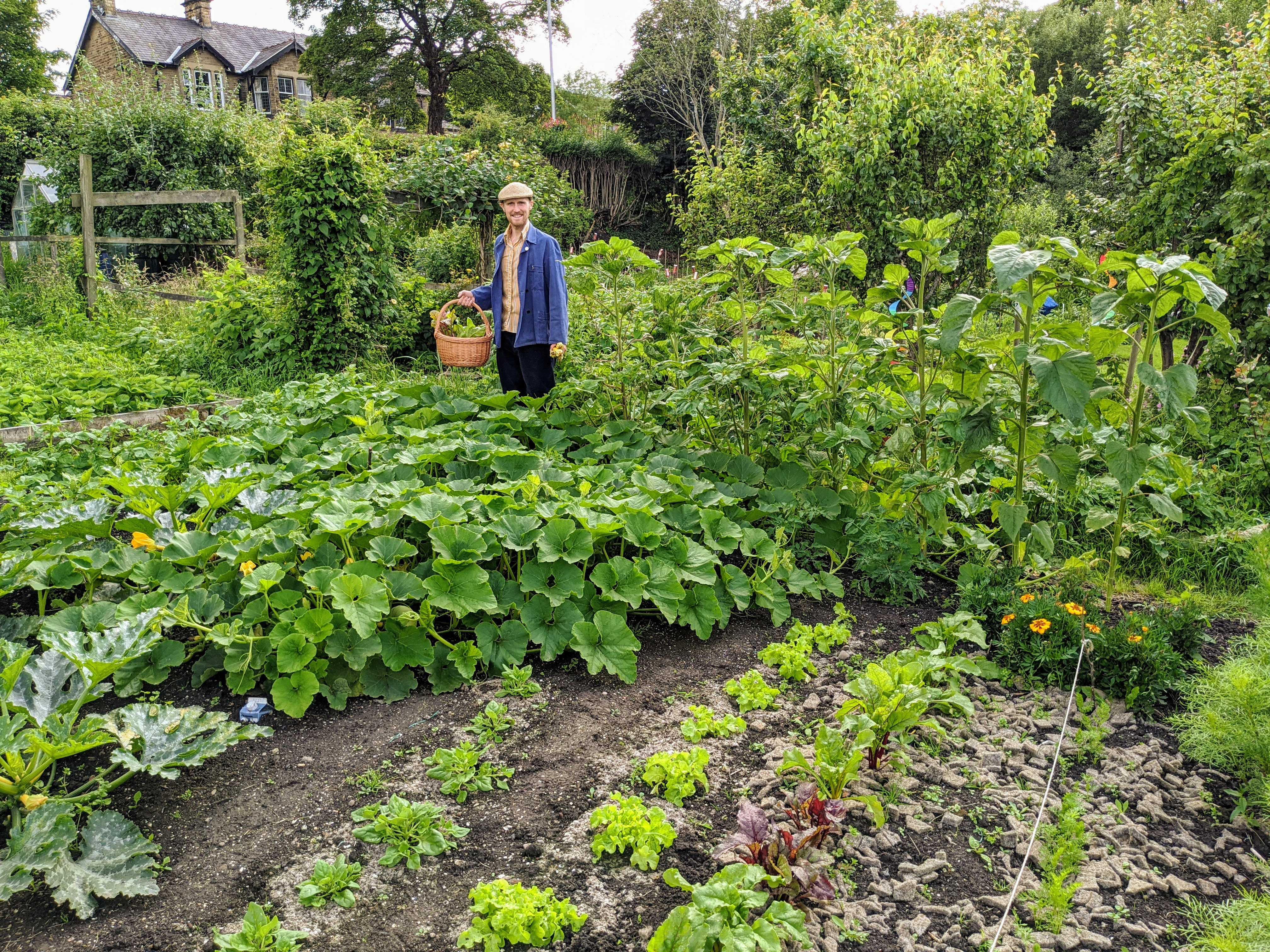 AG readers' allotment stories - Amateur Gardening