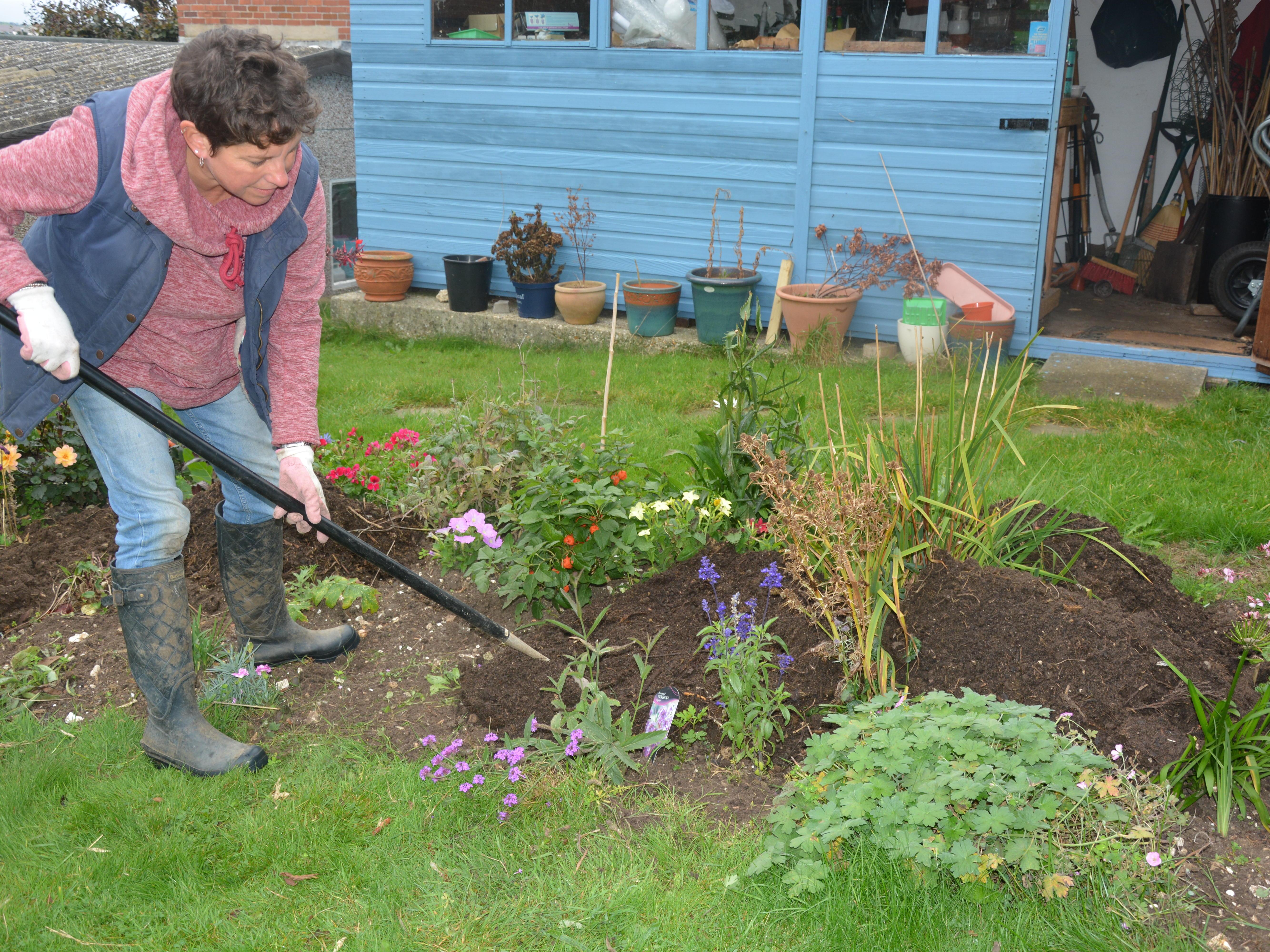 Let's celebrate Organic September - Amateur Gardening