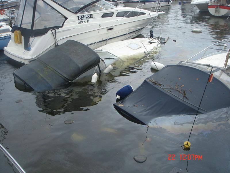 Windermere carnage