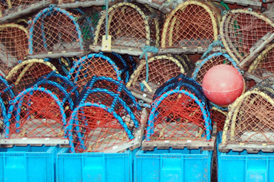 Lobster pots | News | Moter Boats Monthly |