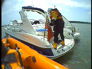 Harwich Bees | Motor Boats Monthly