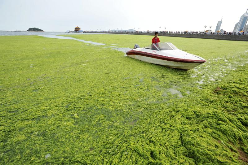 Algae Hits China | Best Boating Photos | Motor Boats Monthly