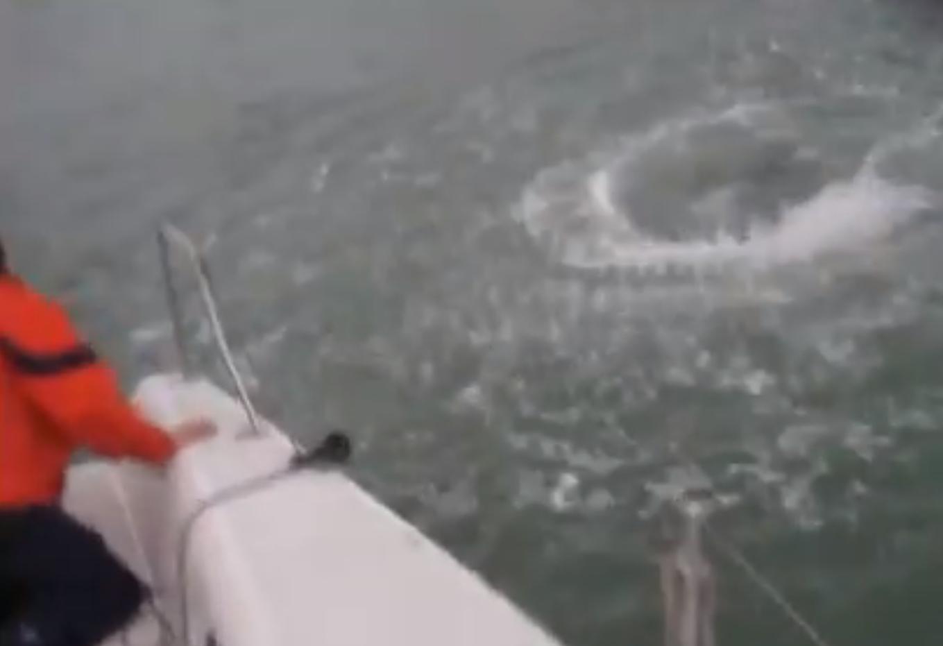 Torqeedo outboard motor boat fail