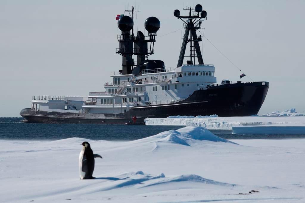 Arctic-P-in-Antarctica