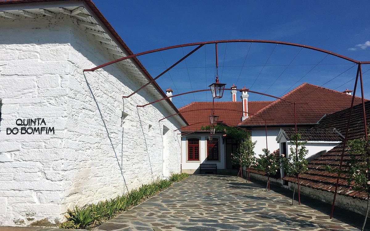 cruising-portugal-Quinta-do-Bomfim-vineyard-credit-Corinne-Julius