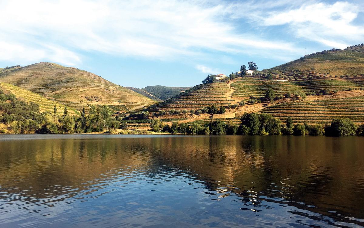 cruising-portugal-douro-river-vineyards-credit-Corinne-Julius