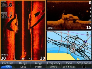 Lowrance Structure Scan image