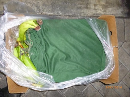 Around 300 kilos of cocaine was discovered at Portsmouth, concealed within a shipment of bananas which had originated in Colombia