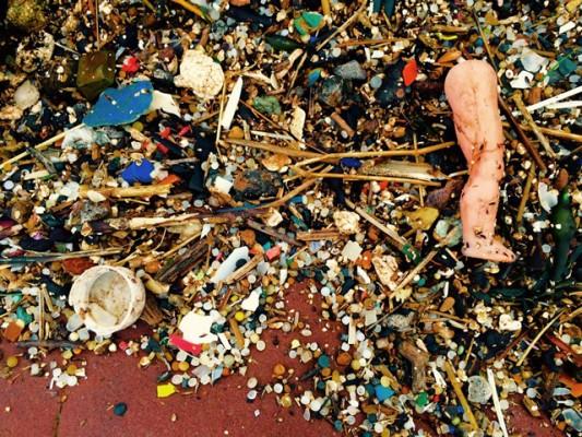 Plastics on the beach at St. Bees. Credit: Trevor Morton
