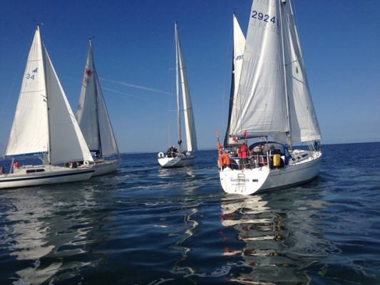Yachts racing at Conwy River Festival