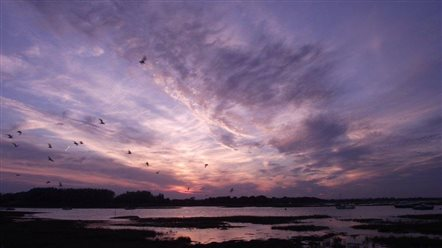 Sunset over Chichester Harbour