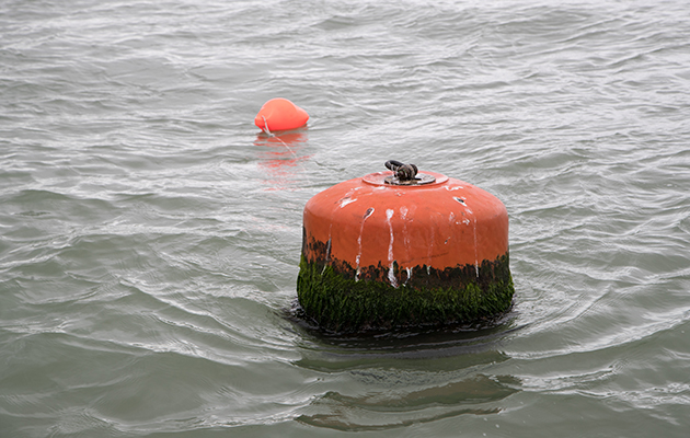 A mooring buoy