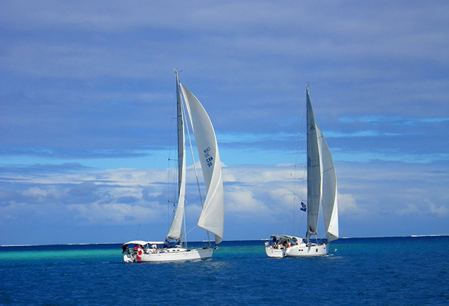 Two yachts with white sails sailing