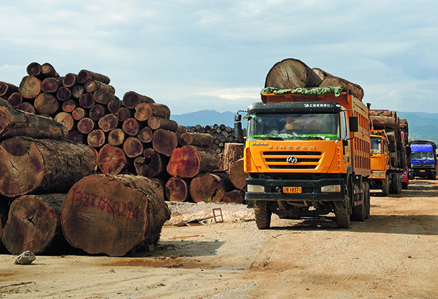 A lorry carrying teak logs