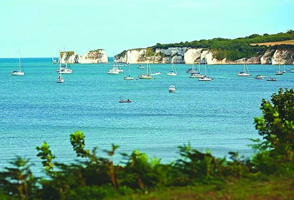 No anchoring zones  could be introduced at the south-west end of the Studland Bay Marine Conservation Zone,