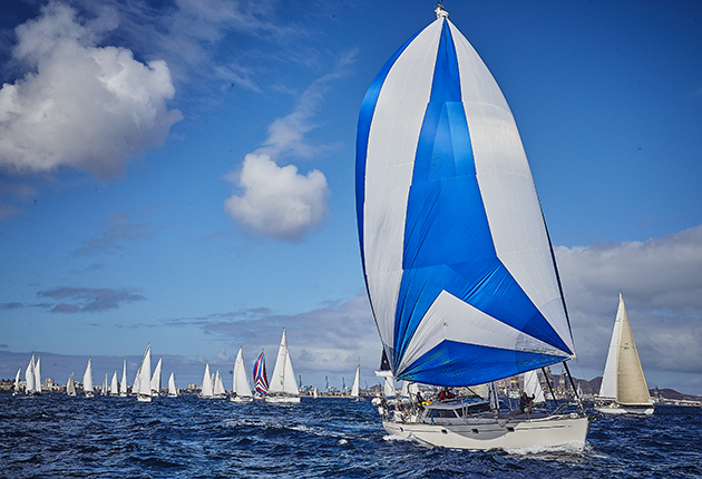 A yacht sailing downwind at the start of the ARC