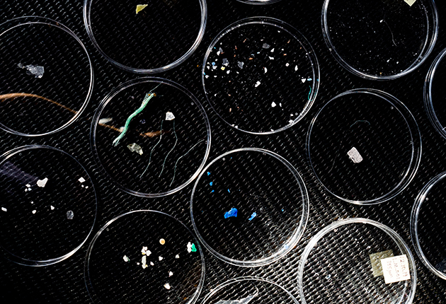 Microplastics found in the ocean as part of a plastic pollution project
