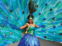 ARC 09 - carnival
