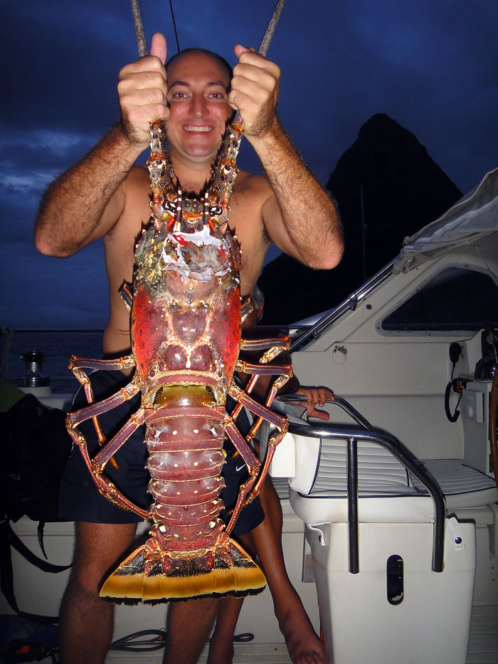 Giant lobster catch - Yachting World