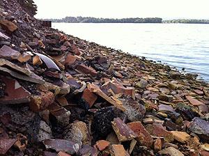 Brownsea Island 2