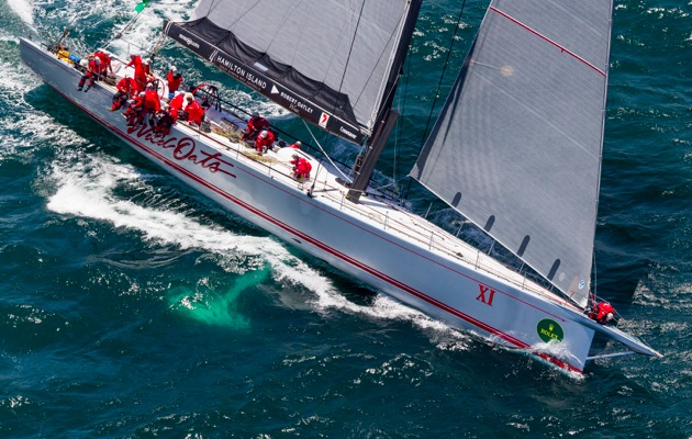 sydney to hobart live betting sports - photo#10