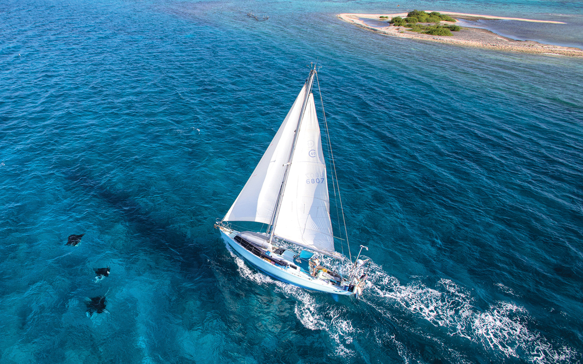 best-ever-bluewater-yachts-Cal-40-credit-Voyage-of-Swell
