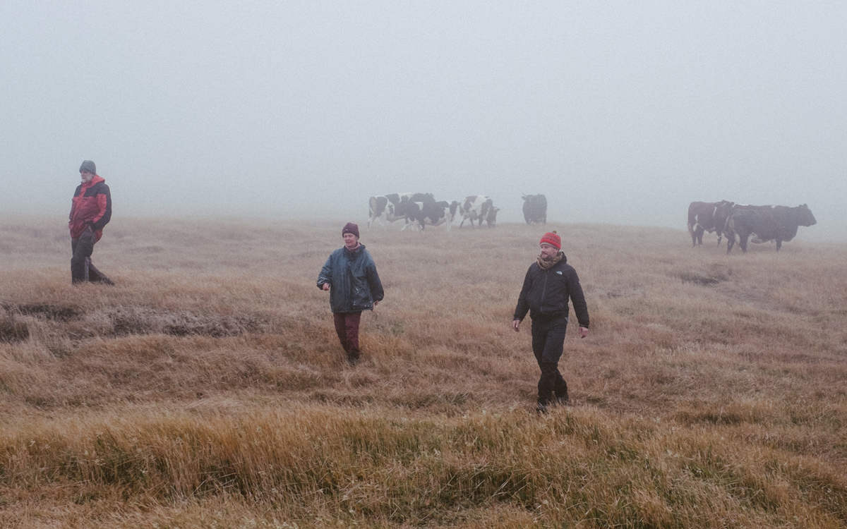 sailing-Falklands-pelagic-delivery-misty-walk-credit-silvia-varela