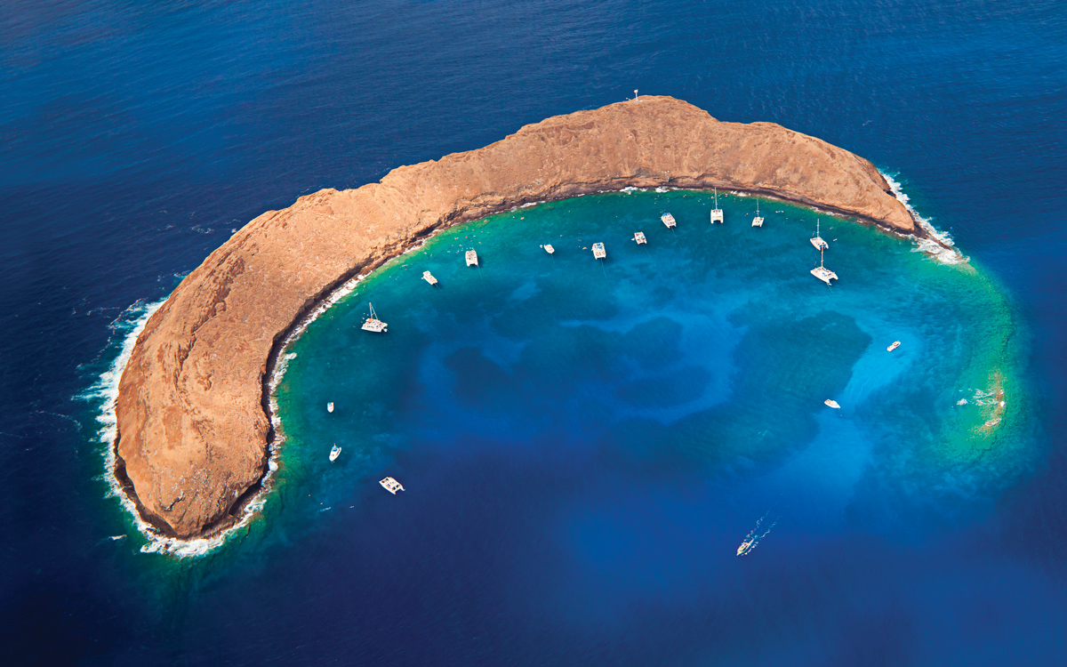 sailing-hawaii-Molokini-crater-credit-David-Fleetham-Alamy