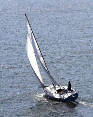 solo-pacific-sailing-webb-chiles-gannet-running-shot-tall